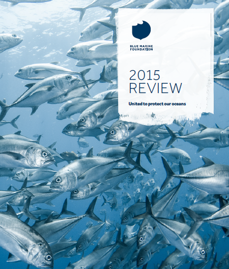 Front cover of 2015 Review