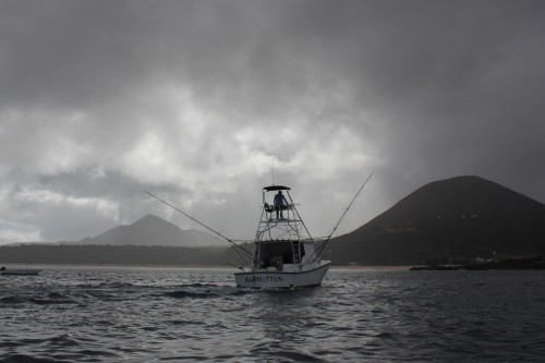 Looking for marlin off Ascension