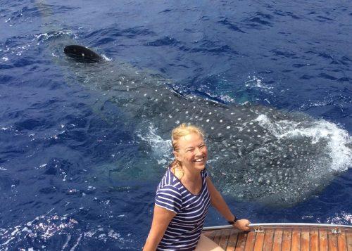 Lisa Phillips and whale shark, St Helena