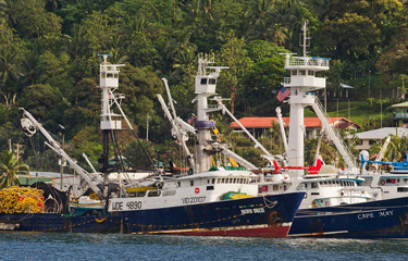 Quot On The Hook Quot Advocacy Group Formed To Challenge Msc Tuna